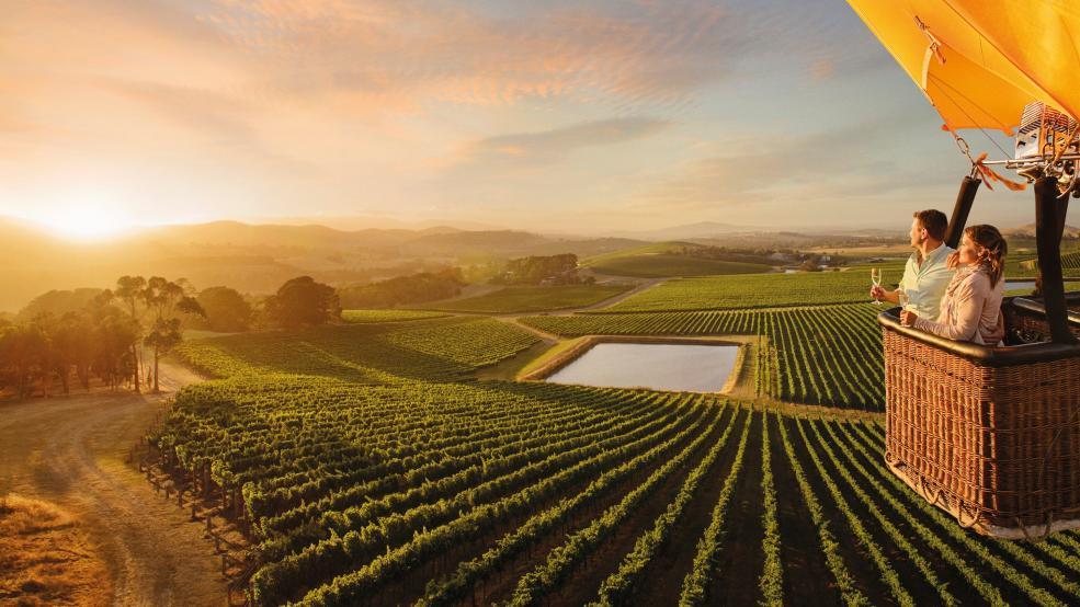 Escape To A Wine-Tasting Adventure In Hunter Valley, Australia